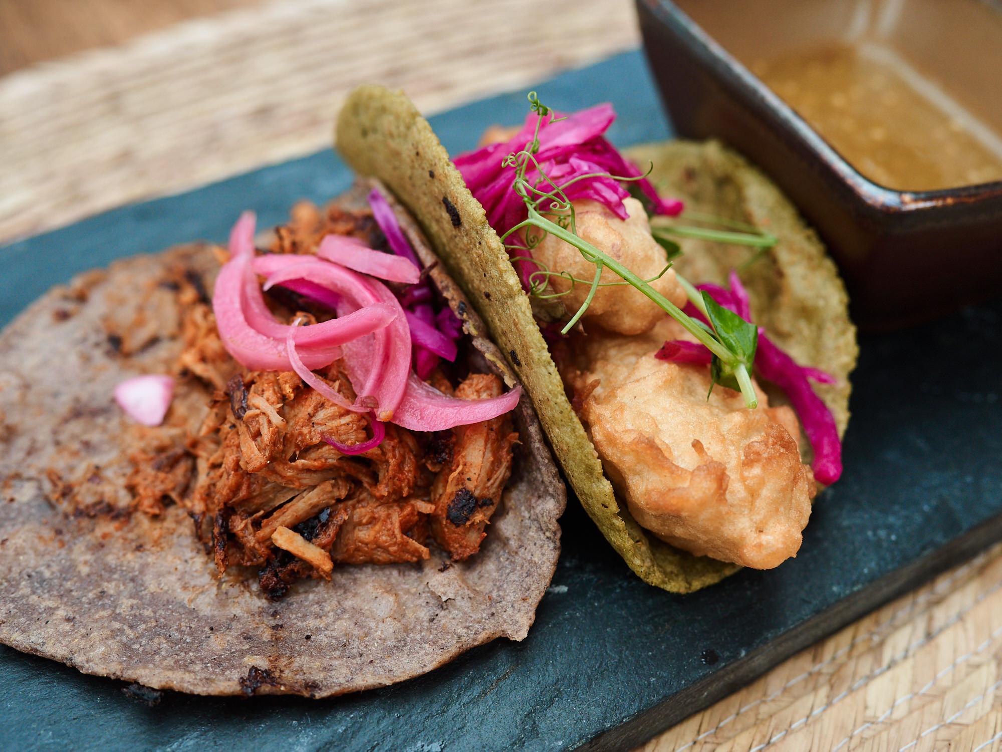 Tacos de Maiz con Conchinita Pibil | Pescado